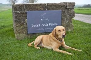 Doles Ash Farmhouse